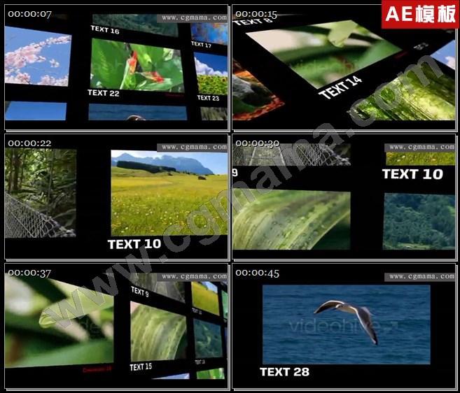 AE5101照片墙电子相册AE模板