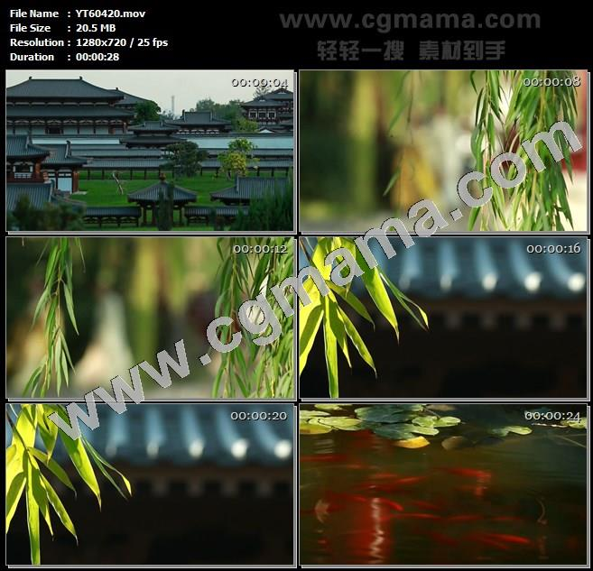 YT60420古代建筑园林幻弓柳树树枝树叶竹叶池塘金鱼高清实拍视频素材