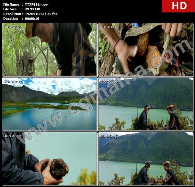 YT77819深山老林桦褐菌水面云朵藏族人民高清实拍视频素材