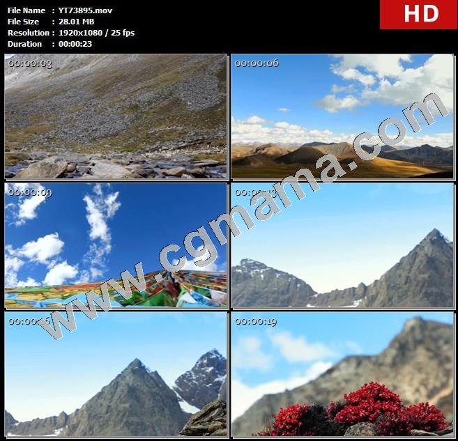 YT73895天空群山山脉喜马拉雅山脉蓝天白云西藏红景天药草药物植物中药高清实拍视频素材