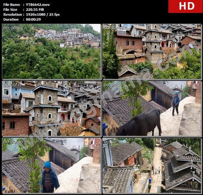 YT86642古木山林山腰房屋建筑街道对联村民绿树高清实拍视频素材