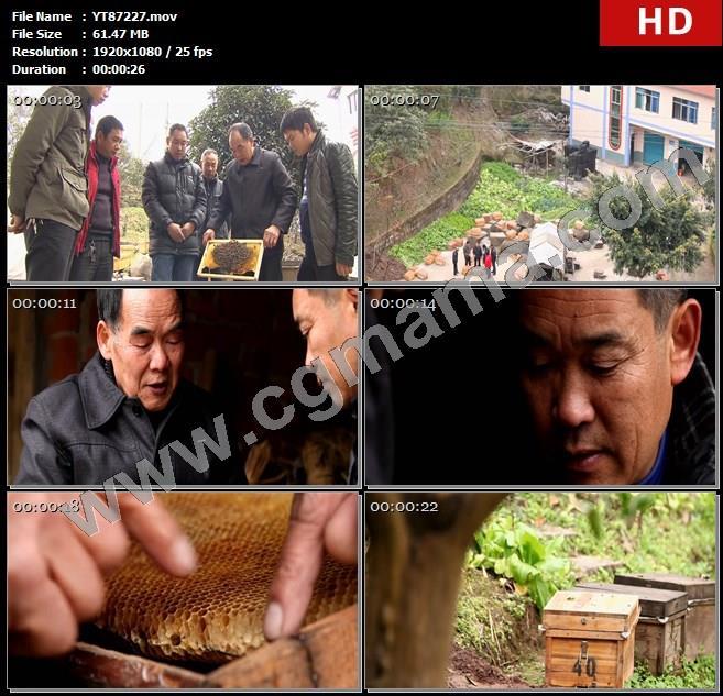 YT87227蜜蜂养蜂蜂箱村民房屋草木蜂蜜养蜂培训班高清实拍视频素材