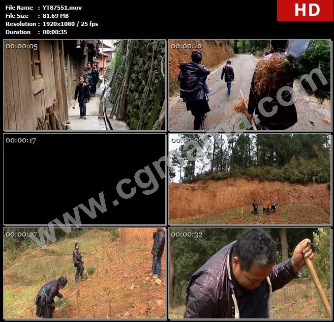 YT87551杉树树苗房屋石块锄头村民农具山路树木高清实拍视频素材