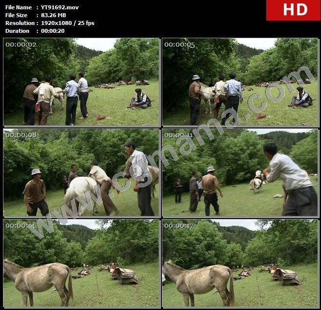 YT91692居民马匹草地大山山林衣物草木骑马高清实拍视频素材