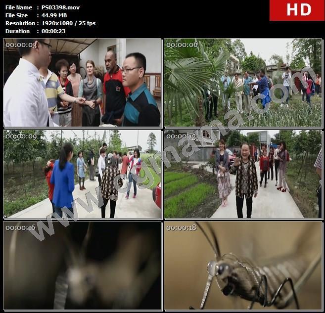 PS03398庭院访客棕叶村民老人小动物编织技艺棕编高清实拍视频素材