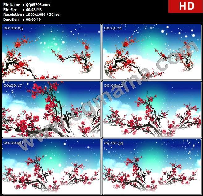 QQ05796腊梅红梅雪梅雪花高清led大屏背景视频素材
