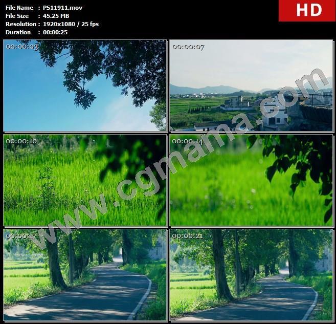 PS11911大树公路飞鸟村庄粉墙黛瓦农田绿草大自然村民高清实拍视频素材