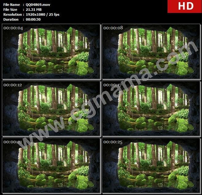 QQ04869唯美森林树林粒子萤火虫绿野仙踪原始森林高清led大屏背景视频素材