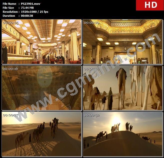 PS23901伊朗伊斯法罕艺术之城阿巴斯酒店人物酒店内部沙漠骆驼高清实拍视频素材