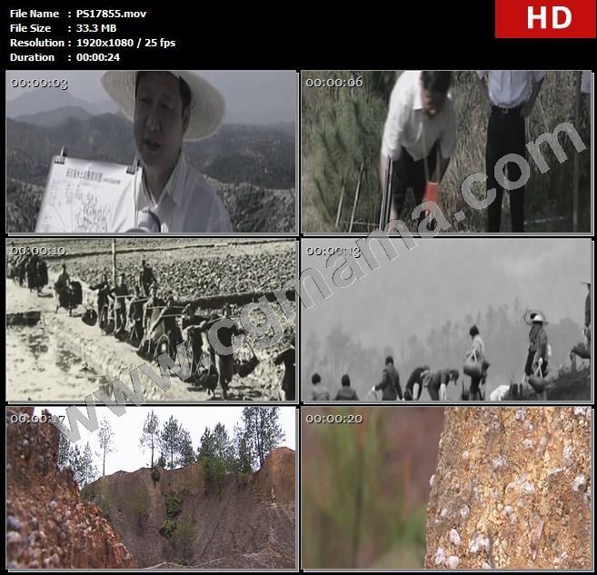 PS17855习近平带领长汀人治山治水山岭树木石块高清实拍视频素材