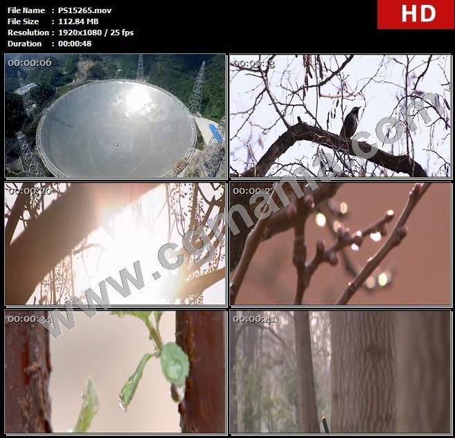 PS15265船火箭列车人物隧道鸟树枝风景高清实拍视频素材