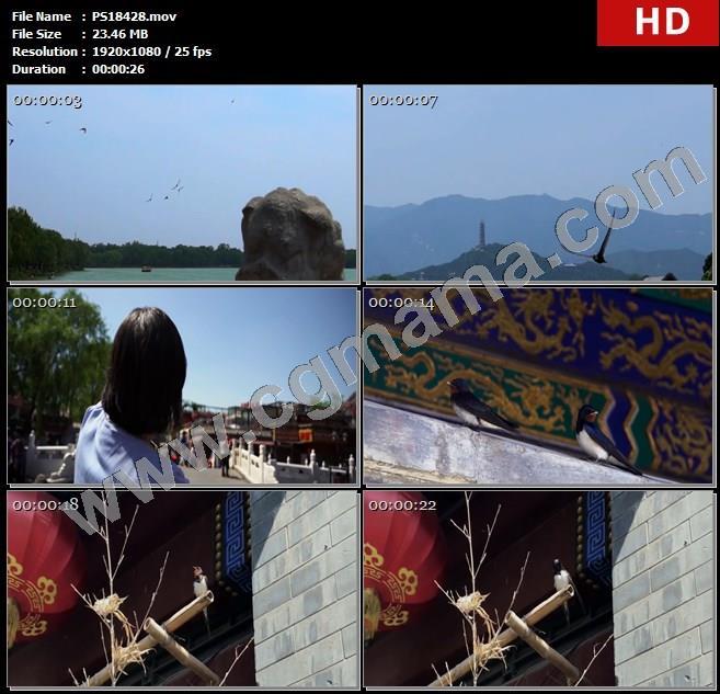 PS18428北京燕子街道人物店铺湖桥高清实拍视频素材