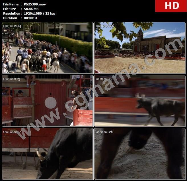 PS25399骑马圣劳伦斗牛大赛人群公牛黑牛男子高清实拍视频素材