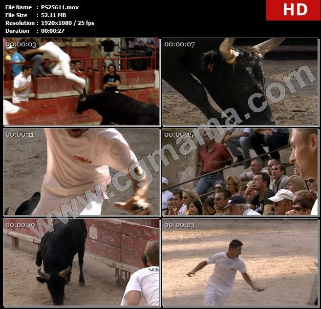 PS25611圣劳伦斗牛大赛公牛黑牛奔跑斗牛士男子高清实拍视频素材