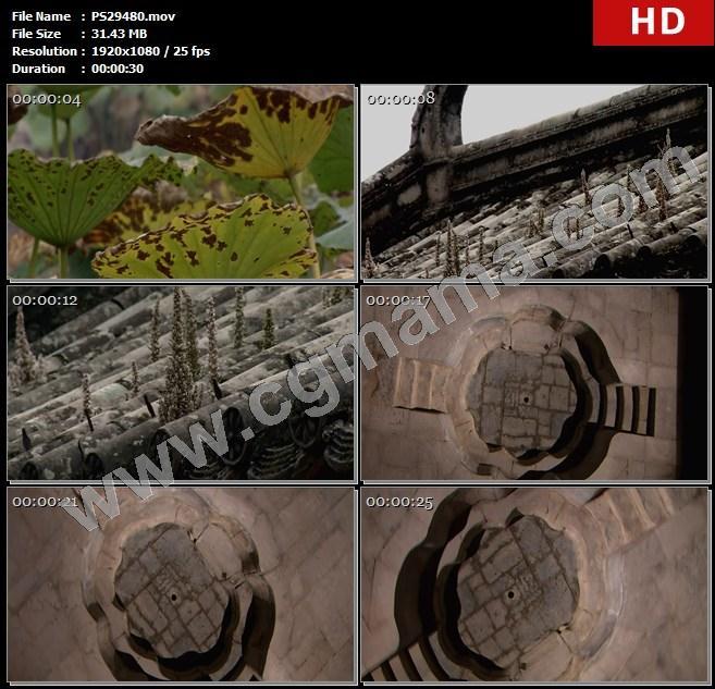PS29480水池柳枝荷叶特写房檐房顶海棠池高清实拍视频素材