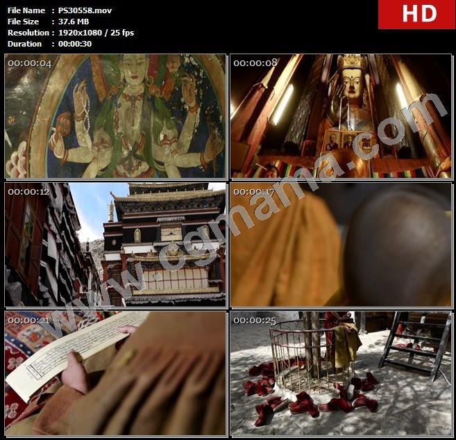 PS30558白居寺扎布伦步寺寺庙僧人僧侣诵经寺院高清实拍视频素材