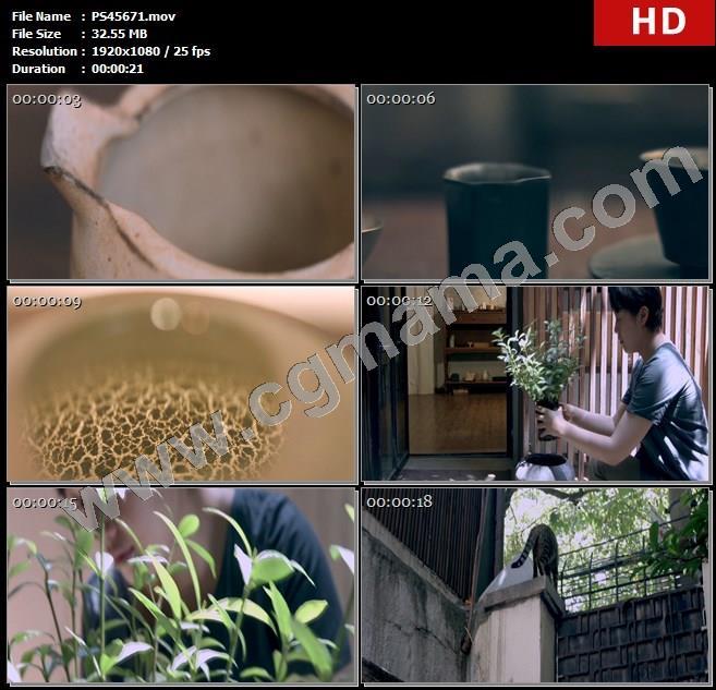 PS45671器具陶器工艺品花瓶店主猫咪宠物屋檐马克杯高清实拍视频素材
