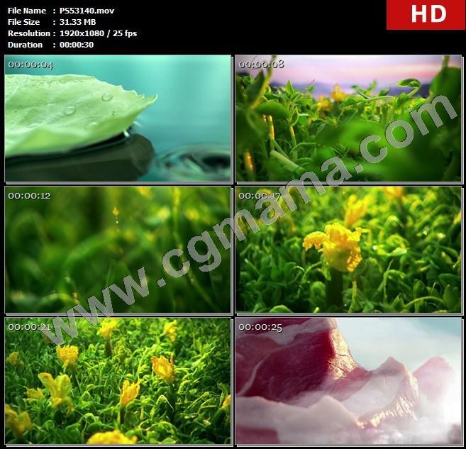 PS53140水滴清水蔬菜菜叶青菜食材黄瓜韭菜羊肉高清实拍视频素材