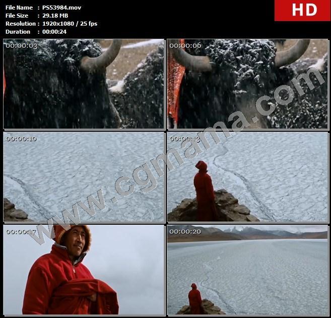 PS53984牦牛大雪雪花湖泊湖面冰面牧民山脉高清实拍视频素材