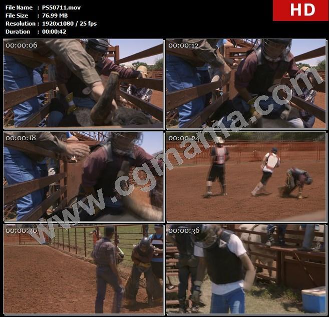 PS50711斗牛士斗牛场沙土栏杆牛角护具头盔黑牛高清实拍视频素材