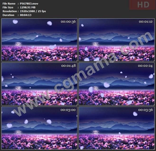 PS67803绒花花海唯美意境夜晚舞蹈大屏幕led晚会高清视频素材