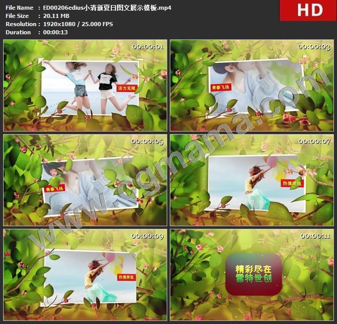 ED00206edius小清新夏日图文展示模板