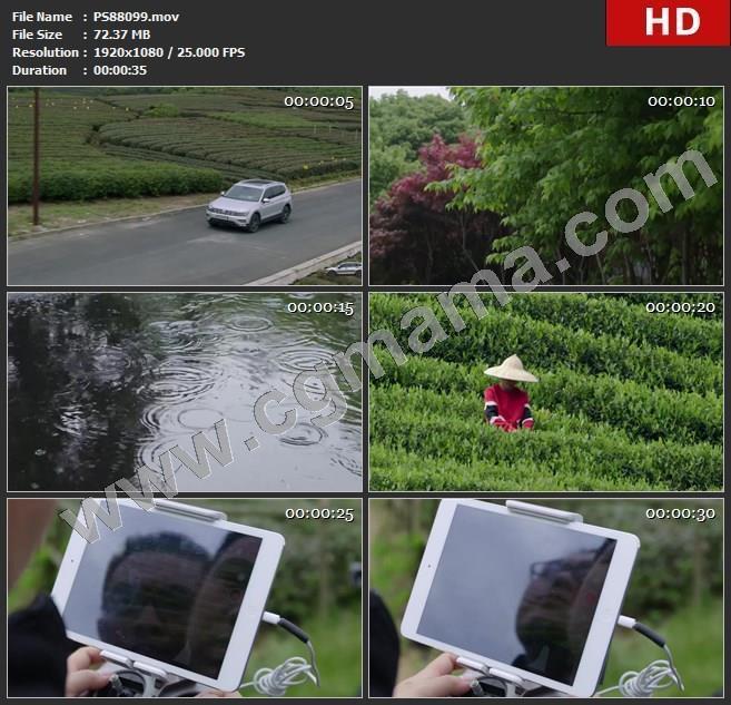 PS88099汽车车辆公路树下雨刮风茶园无人机拍摄采摘高清实拍视频素材
