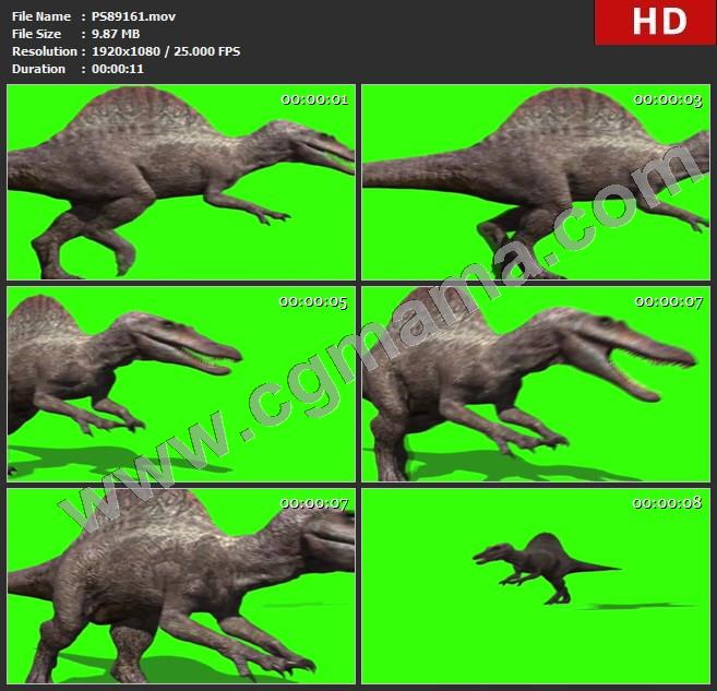 PS89161恐龙9绿屏透明通道视频素材