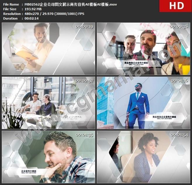 MB02562企业公司图文展示商务宣传AE模板AE模板