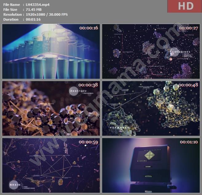 LH43354RANDOX The Future of Health高清宣传片视频素材