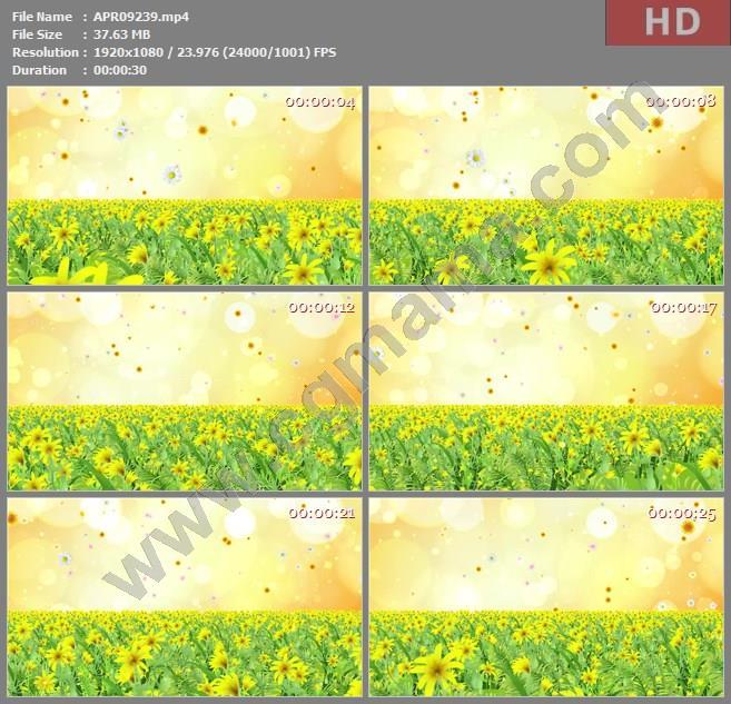 APR09239温馨唯花海动态粒子花瓣散落舞台背景视频led大屏晚会高清视频素材