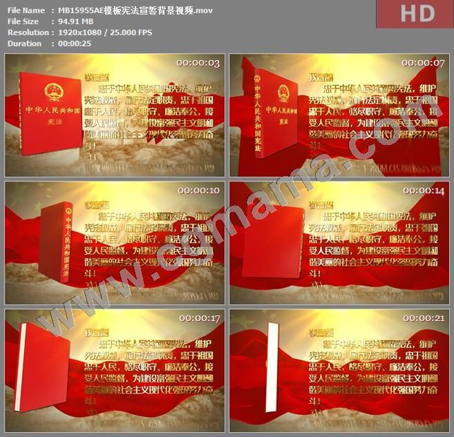MB15955AE模板宪法宣誓背景视频